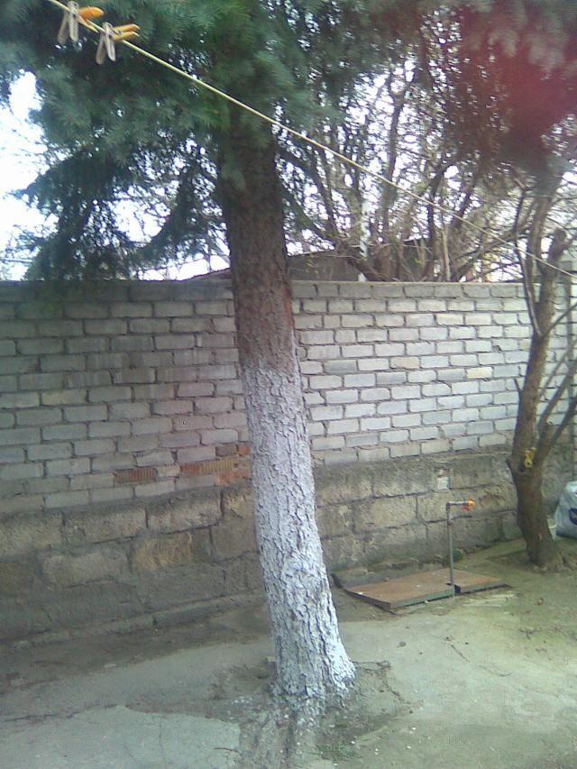 Продается дом на ул. Багрицкого — 65 000 у.е. (фото №4)