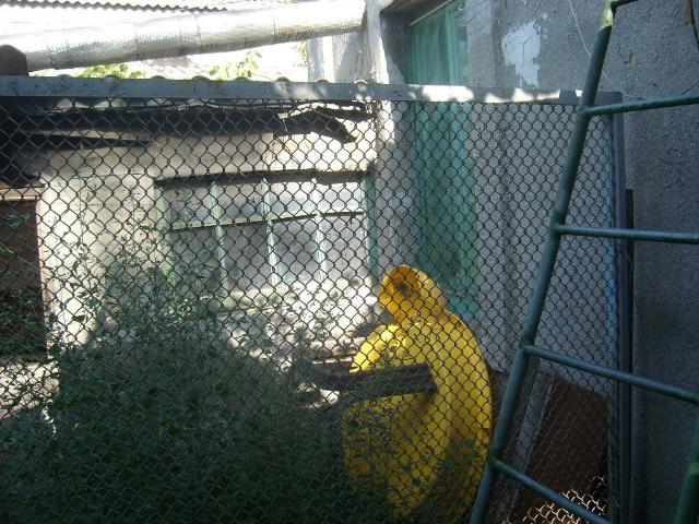 Продается дом на ул. Известковая — 38 000 у.е. (фото №4)