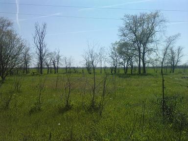 Продается земельный участок на ул. 1-Я Линия — 7 500 у.е.