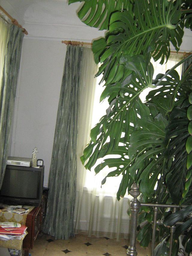 Продается дом на ул. Рулевой Пер. — 125 000 у.е. (фото №4)