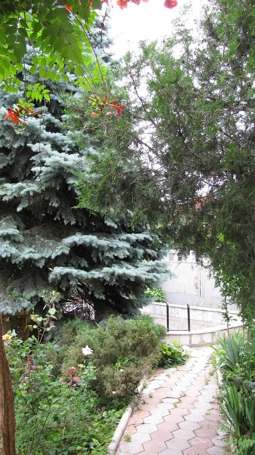 Продается дом на ул. Шишкина 3-Й Пер. — 200 000 у.е. (фото №2)