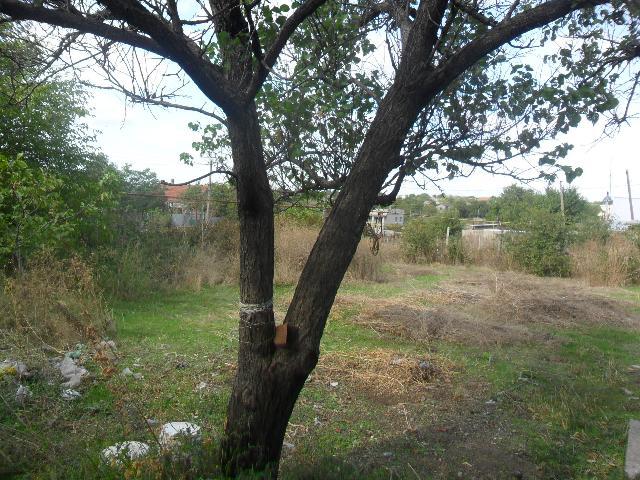 Продается дом на ул. Новая — 25 000 у.е. (фото №9)