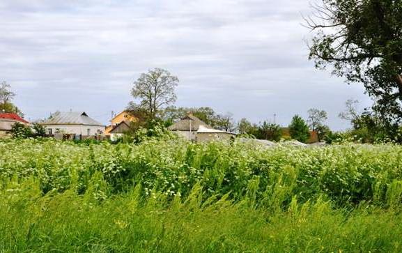 Продается земельный участок на ул. Солнечная — 20 000 у.е.
