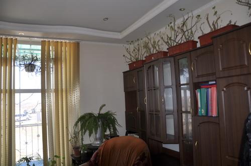 Продается дом на ул. 53-Я Линия — 130 000 у.е. (фото №11)