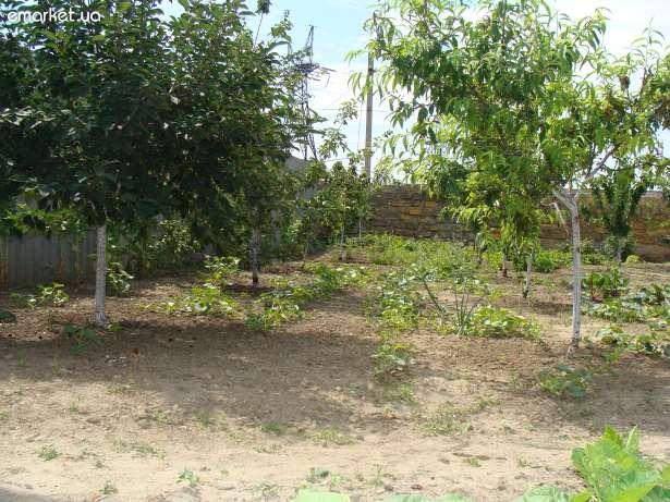 Продается дом на ул. Колхозная — 55 000 у.е. (фото №4)