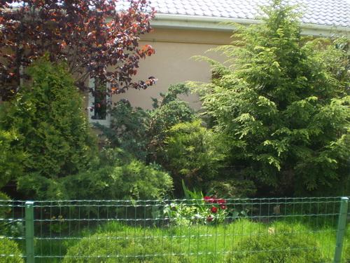 Продается дом на ул. Днепровский Пер. — 260 000 у.е. (фото №17)