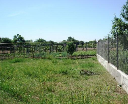 Продается земельный участок на ул. Радостная — 30 000 у.е.