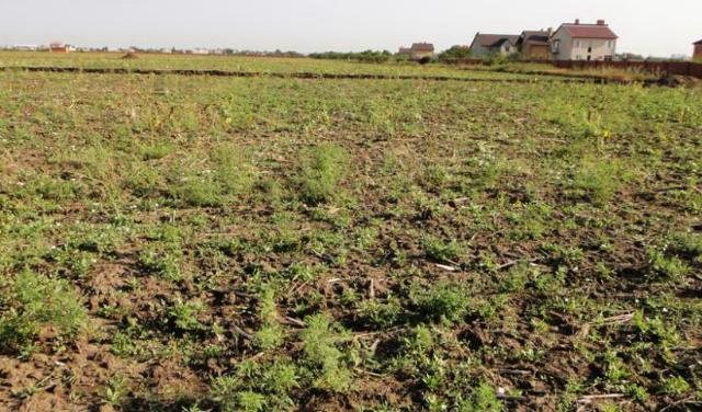 Продается земельный участок на ул. Ставковая — 8 000 у.е.