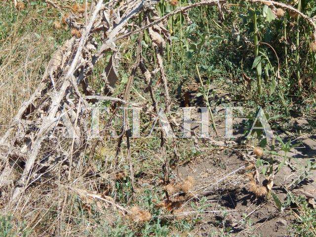 Продается земельный участок — 9 000 у.е. (фото №7)