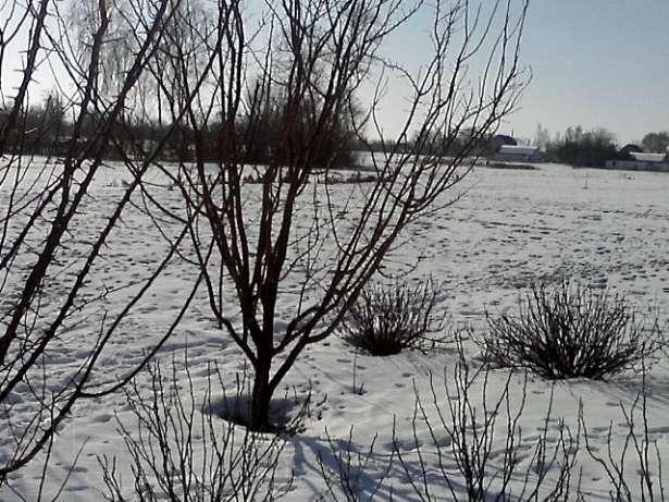 Продается земельный участок на ул. Молодежная — 20 000 у.е.