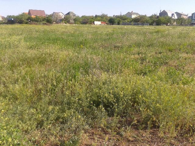 Продается земельный участок — 11 000 у.е.