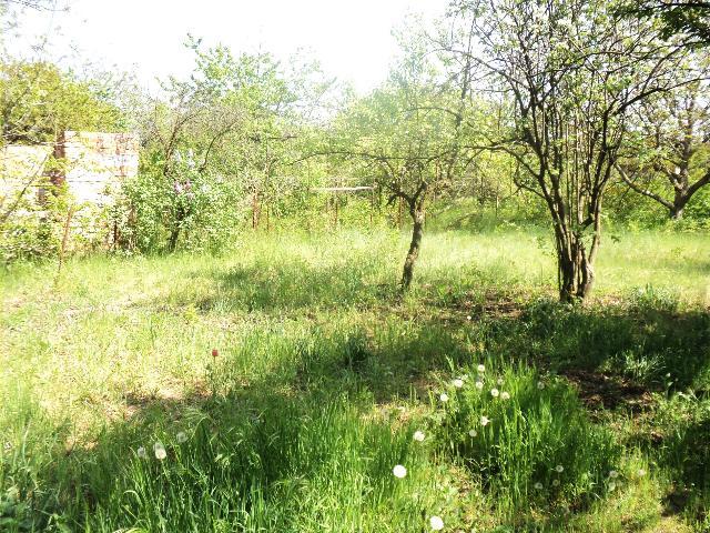 Продается земельный участок на ул. Центральная — 5 000 у.е. (фото №5)
