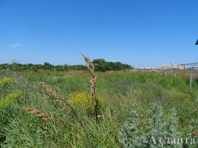 Продается земельный участок на ул. Массив № 38 — 40 000 у.е.