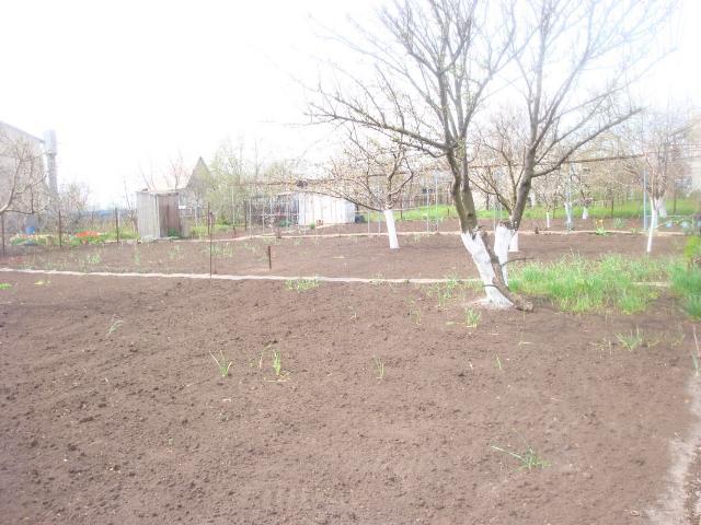 Продается земельный участок на ул. Садовая — 10 000 у.е. (фото №5)