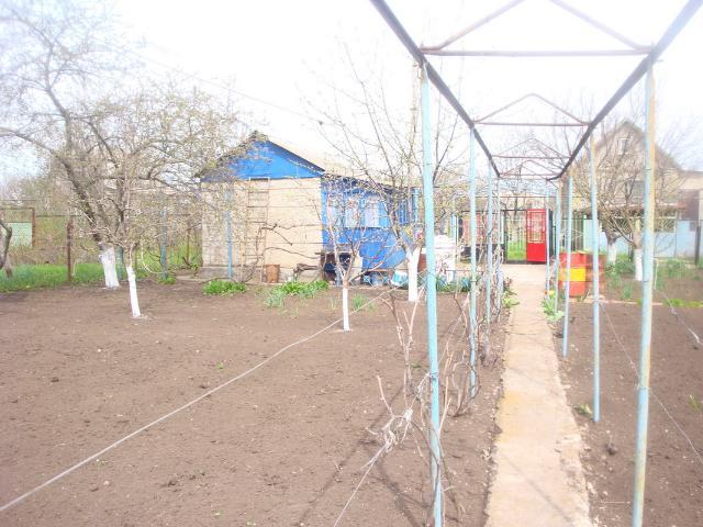 Продается земельный участок на ул. Садовая — 10 000 у.е. (фото №8)
