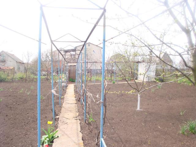 Продается земельный участок на ул. Садовая — 10 000 у.е. (фото №10)