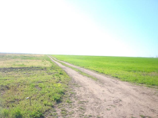 Продается земельный участок на ул. Новогодний Пер. — 5 000 у.е. (фото №6)