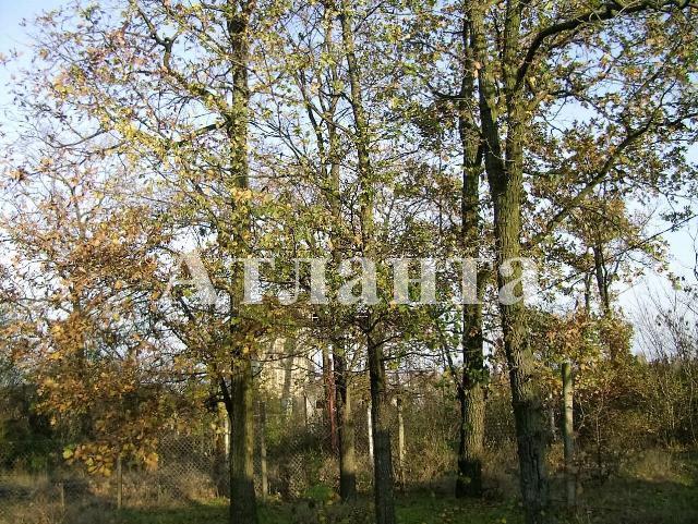 Продается земельный участок — 10 000 у.е. (фото №2)