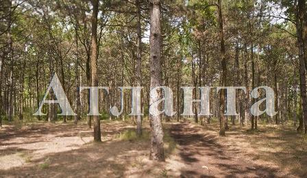 Продается земельный участок на ул. Ореховая — 182 650 у.е. (фото №5)