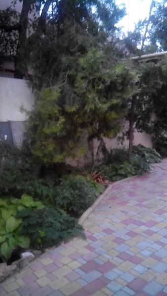 Сдается дом на ул. Тульская — 1 000 у.е./мес. (фото №3)