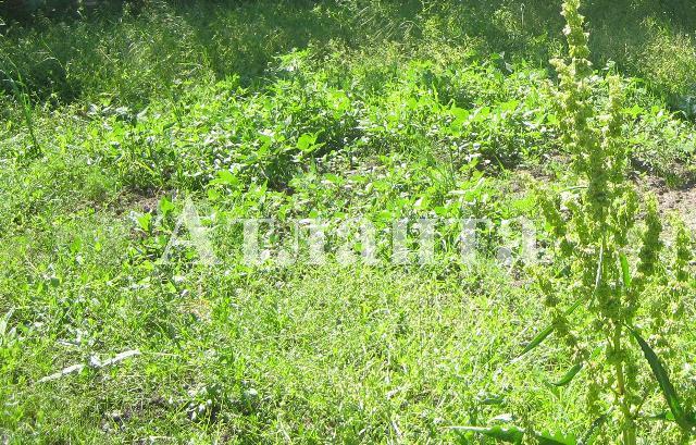 Продается земельный участок на ул. Массив № 10 — 300 000 у.е.