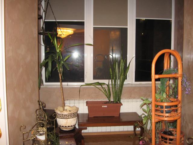 Продается 4-комнатная квартира на ул. Гайдара Бул. — 300 000 у.е. (фото №3)
