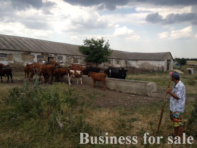 Продается Сельхозпредприятие на ул. Виноградная — 80 000 у.е. (фото №7)