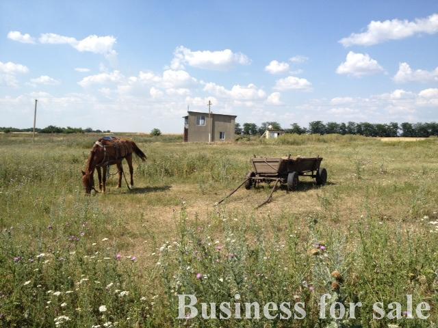 Продается Сельхозпредприятие на ул. Виноградная — 80 000 у.е. (фото №8)