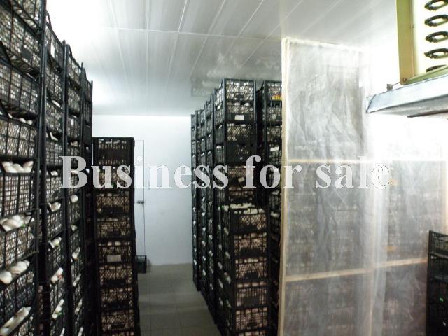 Продается Предприятие на ул. 2882 — 670 000 у.е. (фото №16)