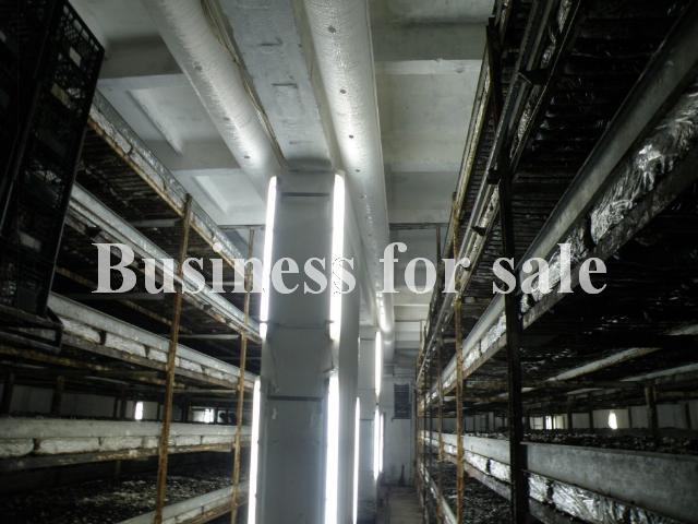 Продается Предприятие на ул. 2882 — 670 000 у.е. (фото №21)