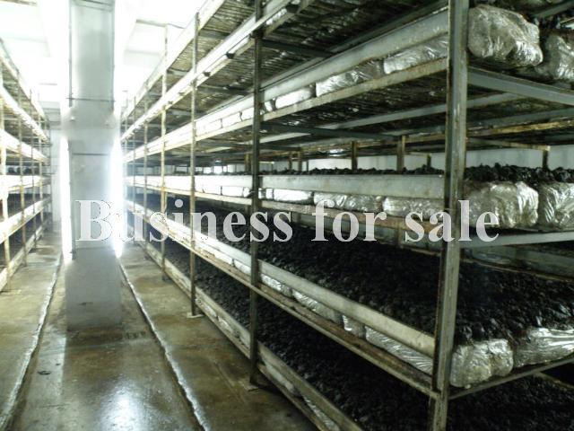 Продается Предприятие на ул. 2882 — 670 000 у.е. (фото №22)