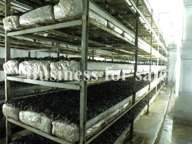 Продается Предприятие на ул. 2882 — 670 000 у.е. (фото №23)