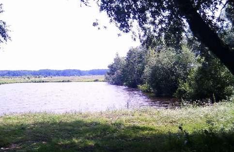 Продается земельный участок на ул. Винниченко (Пятницкого) — 7 500 у.е.