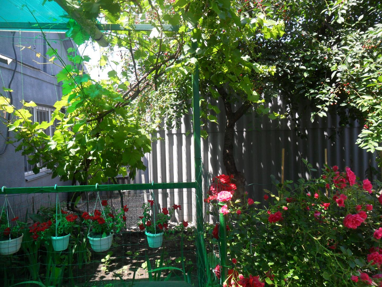 Продается дом на ул. Виноградная — 32 000 у.е. (фото №12)