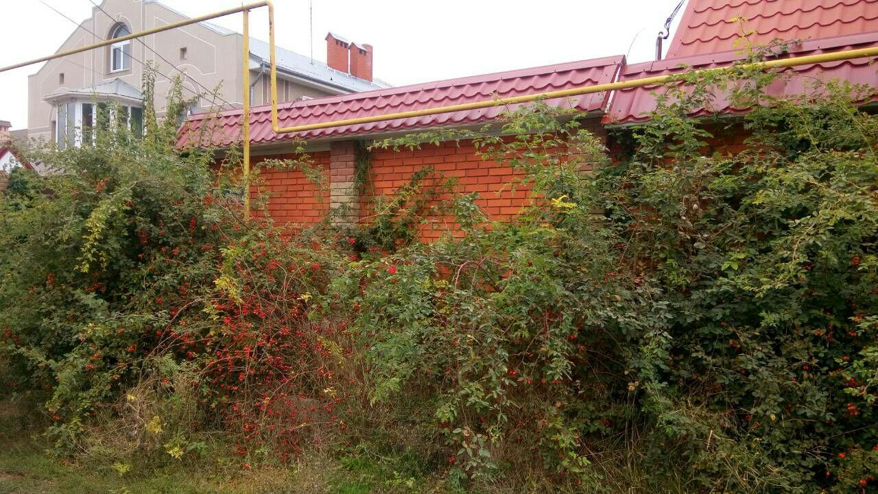 Продается дом на ул. Южная — 77 000 у.е. (фото №5)