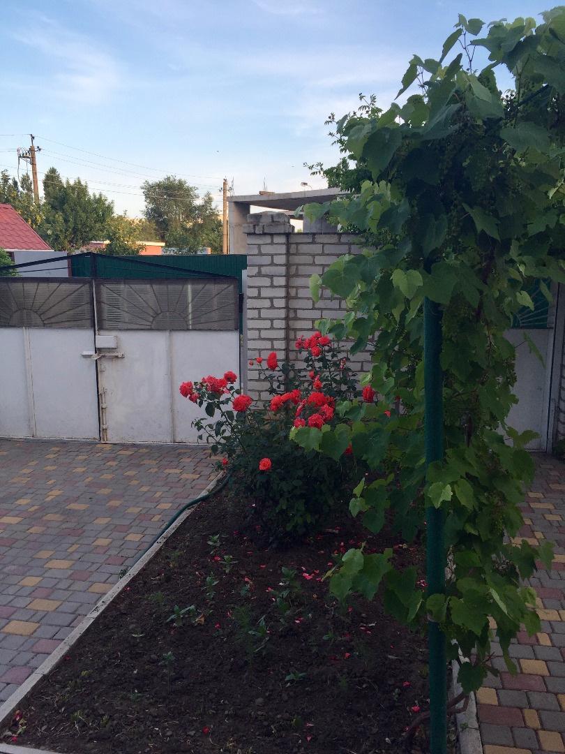 Продается дом на ул. Кленовая — 630 000 у.е. (фото №20)