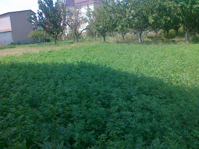 Продается земельный участок на ул. Новосельского (Островидова) — 90 000 у.е.