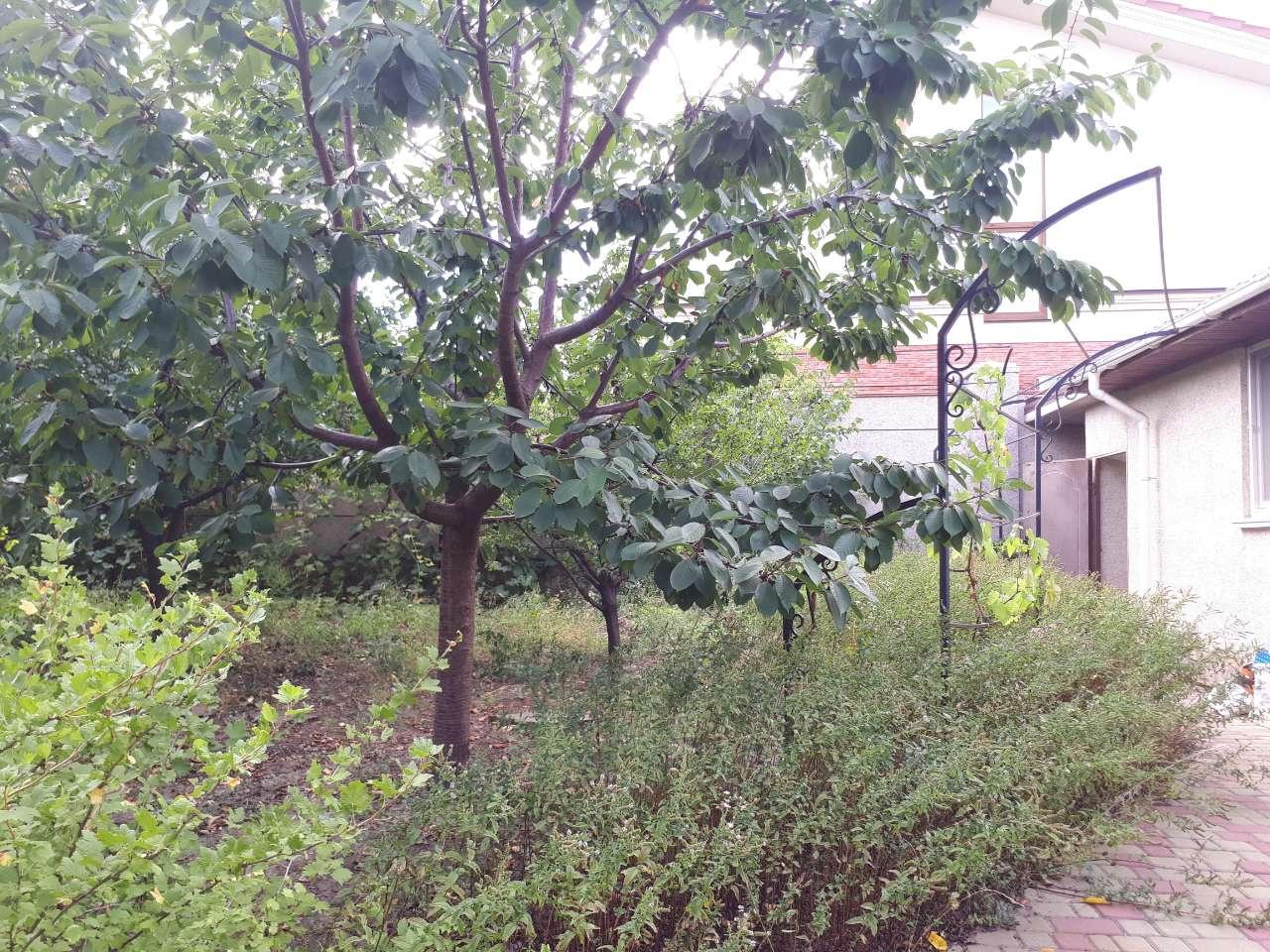 Продается дом на ул. Звездная — 420 000 у.е. (фото №17)
