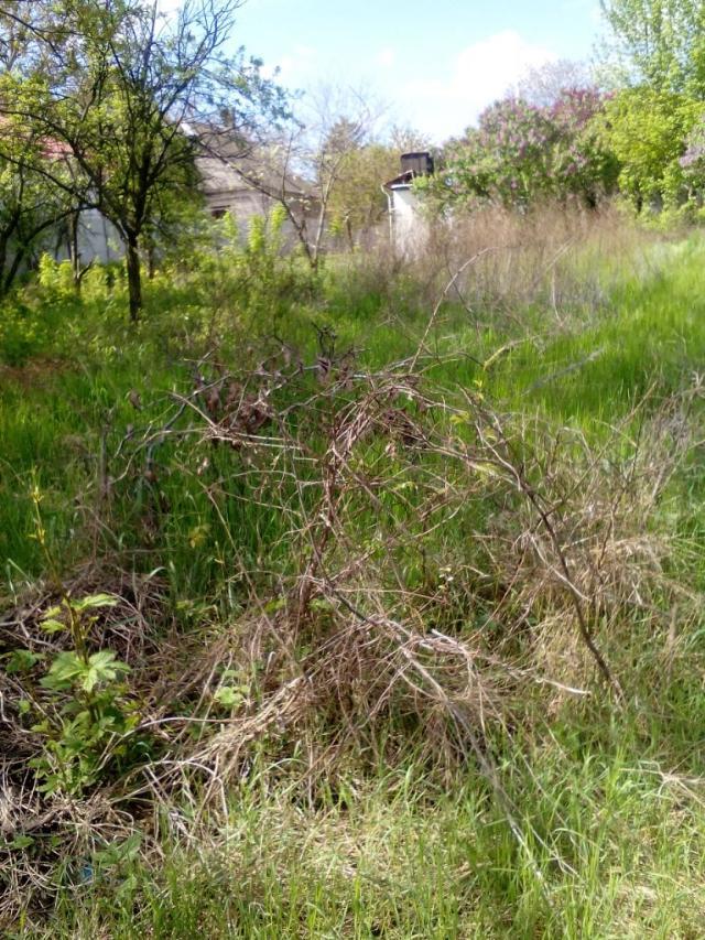 Продается земельный участок на ул. Тимирязева — 420 000 у.е. (фото №2)