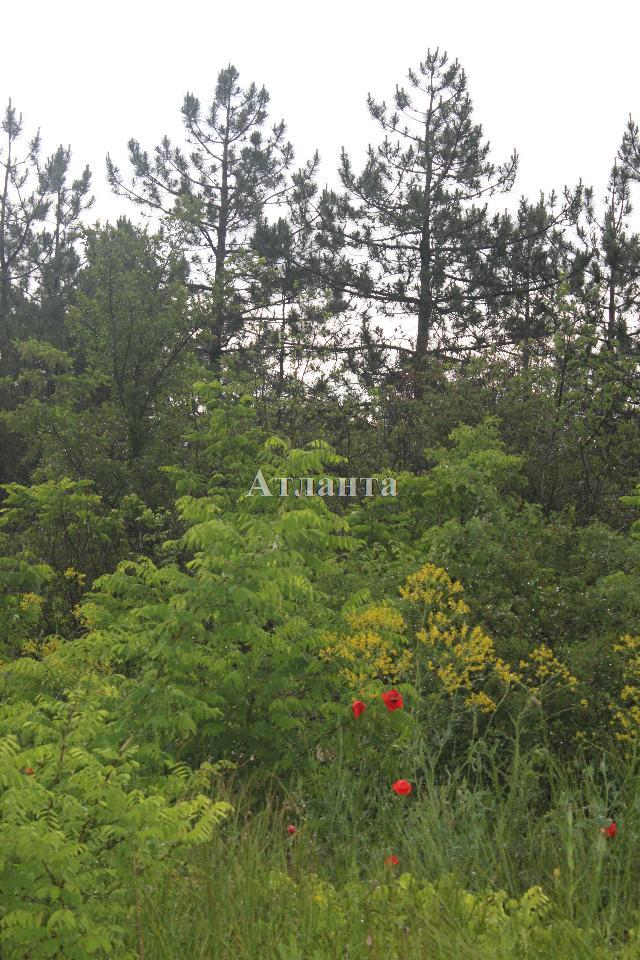 Продается земельный участок — 7 000 у.е. (фото №4)