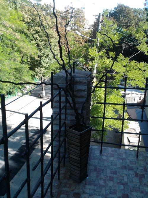 Продается дом на ул. Обсерваторный Пер. (Тон Дык Тхана Пер.) — 500 000 у.е. (фото №4)