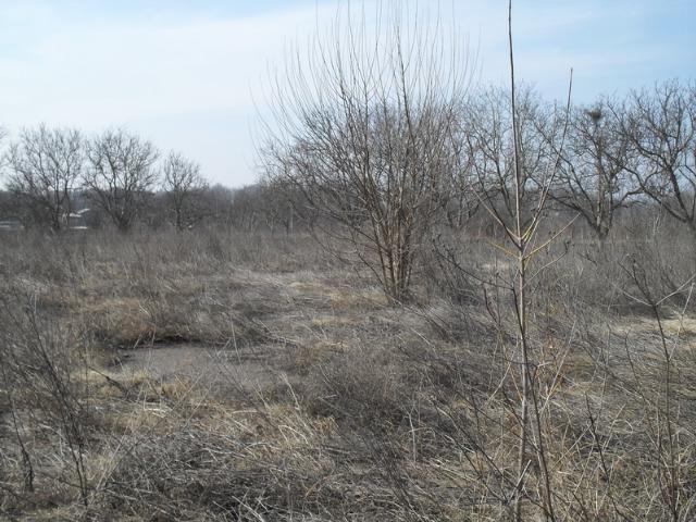 Продается земельный участок на ул. Западная — 3 500 у.е.