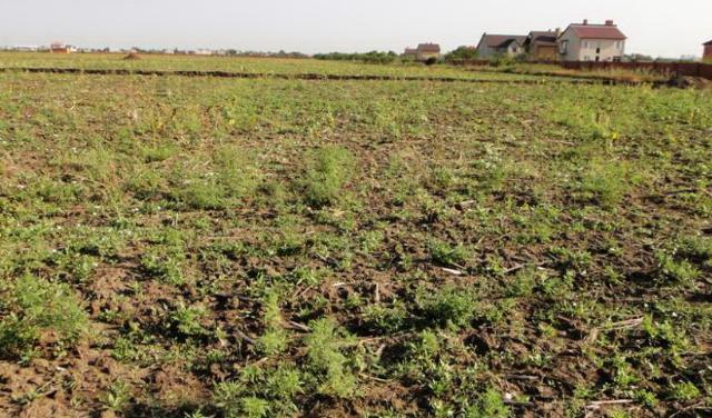 Продается земельный участок на ул. Ставкова — 8 000 у.е.