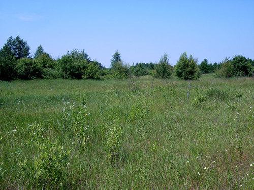 Продается земельный участок на ул. Грушевского Михаила — 5 000 у.е.