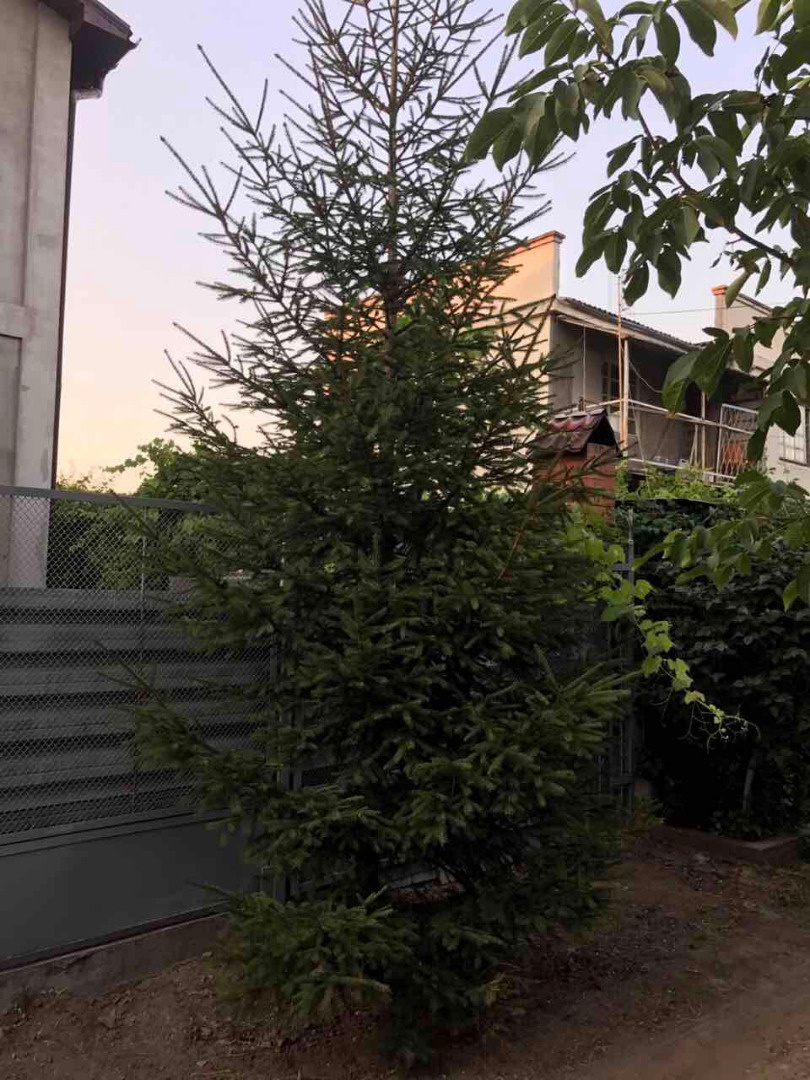 Продается Дом на ул. Лиманная 6-Я — 50 000 у.е. (фото №16)