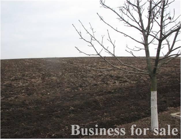 Продается Земельные угодия — 450 000 у.е. (фото №2)