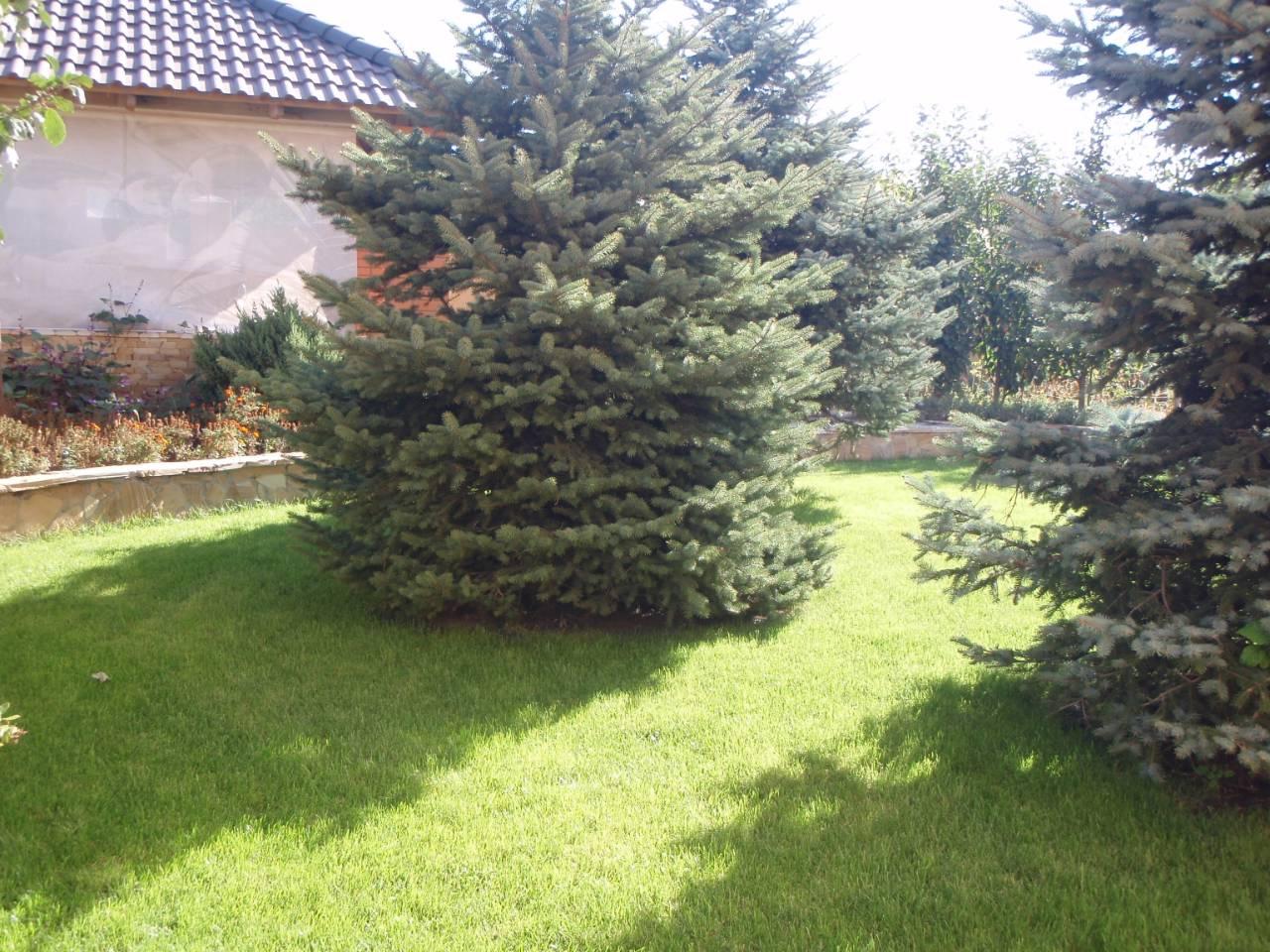 Продается Дом на ул. Ивана Липы (Калинина) — 550 000 у.е. (фото №22)